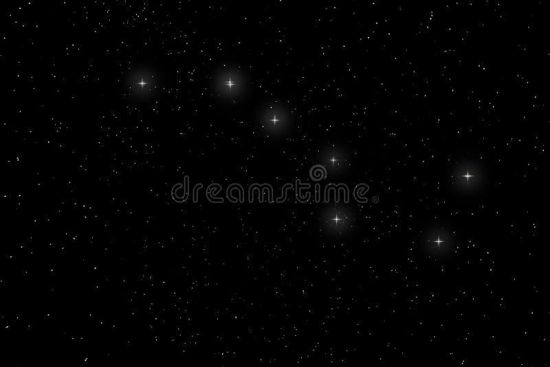 Karlavagnenkonstellation, Ursa Major, den stora björnen royaltyfri fotografi