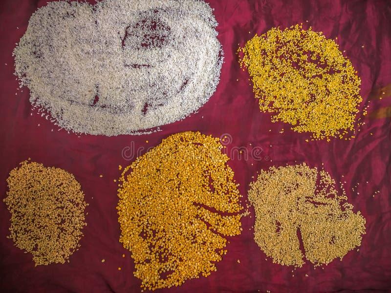 Karmowe adra, Rice groszkują Dalej wałkonią się tło obraz stock