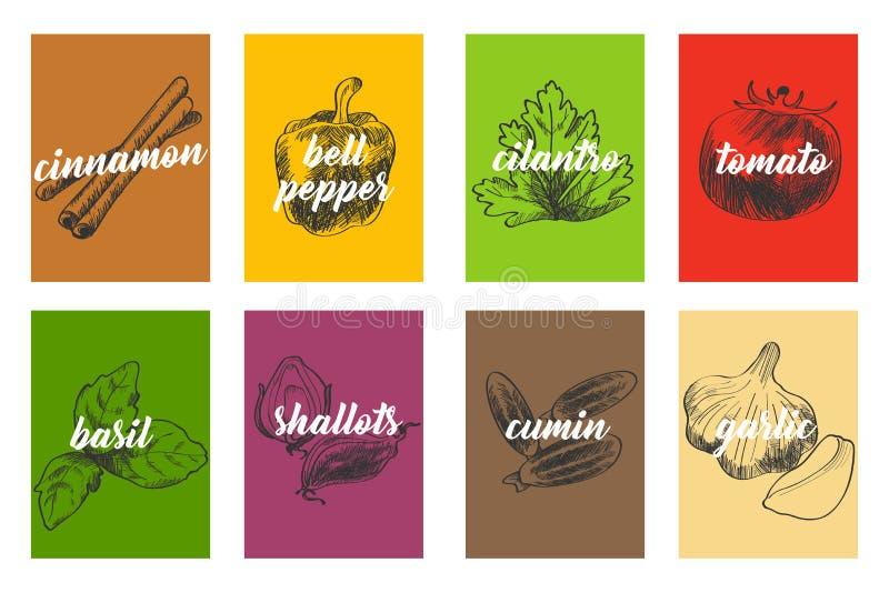 Karmowi Kulinarni składniki Ilustracyjni ilustracji