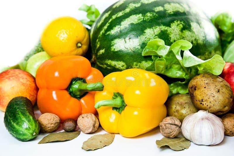 karmowy świeży zdrowy obraz stock