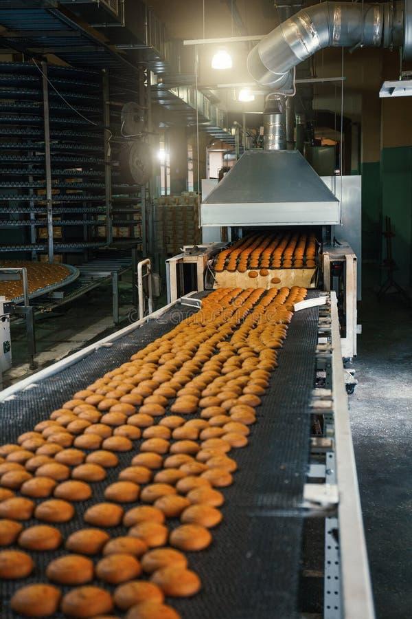 Karmowy fabryki, linii produkcyjnej lub konwejeru pasek z świeżymi piec ciastkami, Nowożytny automatyzujący ciasteczko i piekarni obraz stock