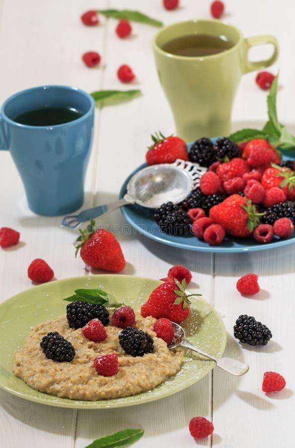 Karmowy fotografii oatmeal z jagodami obraz stock