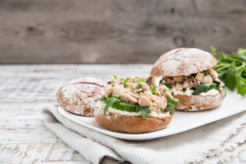 Karmowy hamburger z tuńczykiem, ziele, ogórki, chałupa ser, cebule obrazy stock