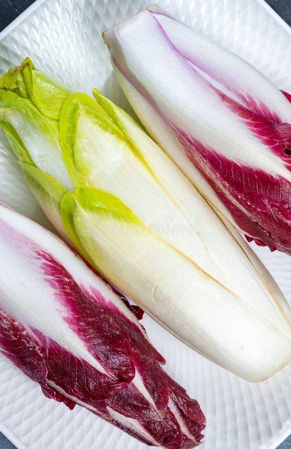 Karmowy tło, mieszkania nieatutowy pojęcie z świeżą zieloną Belgijską endywią lub Radicchio warzywa, cykoriowi i czerwoni, także  zdjęcie royalty free