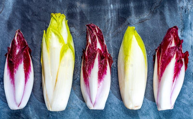 Karmowy tło, mieszkania nieatutowy pojęcie z świeżą zieloną Belgijską endywią lub Radicchio warzywa, cykoriowi i czerwoni, także  fotografia royalty free