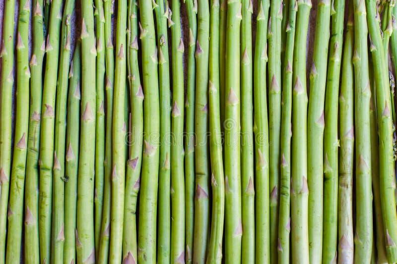 Karmowy tło zielony szparagowy trzon zdjęcia stock