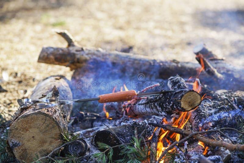 Karmowy turysta na ogieniu, kiełbasy na skewers zna ` s na ogieniu w lesie, harcerz zdjęcie royalty free