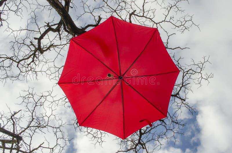 Karmozijnrode paraplu royalty-vrije stock afbeelding