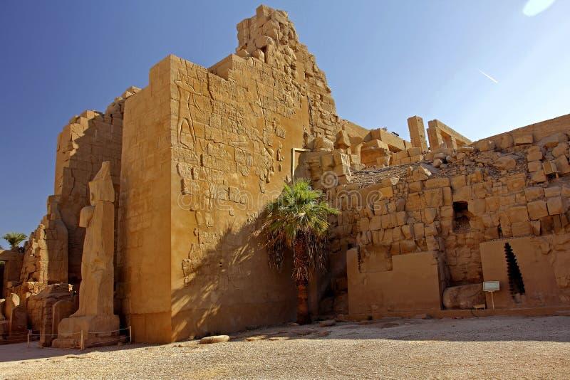 Karnak świątyni kompleks; Palma zdjęcie stock