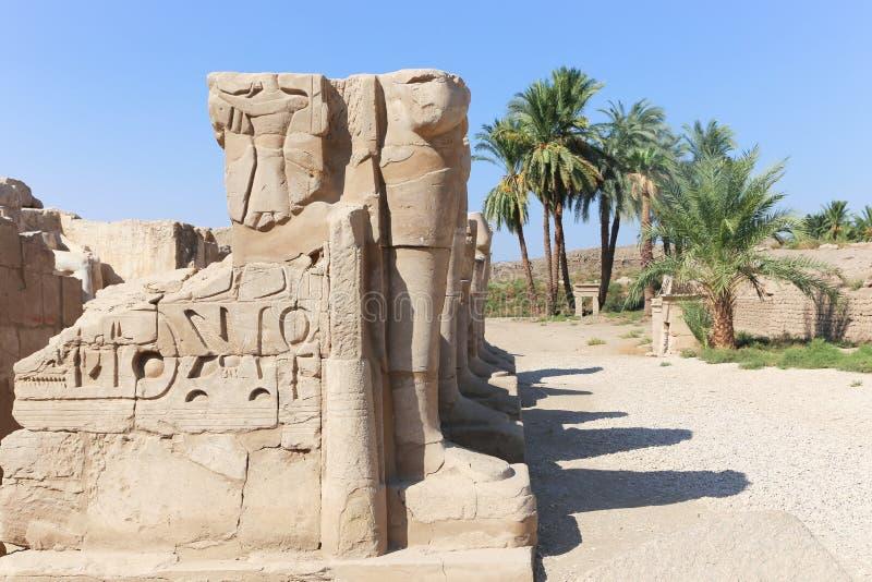 Karnak świątynia - Egipt obrazy royalty free