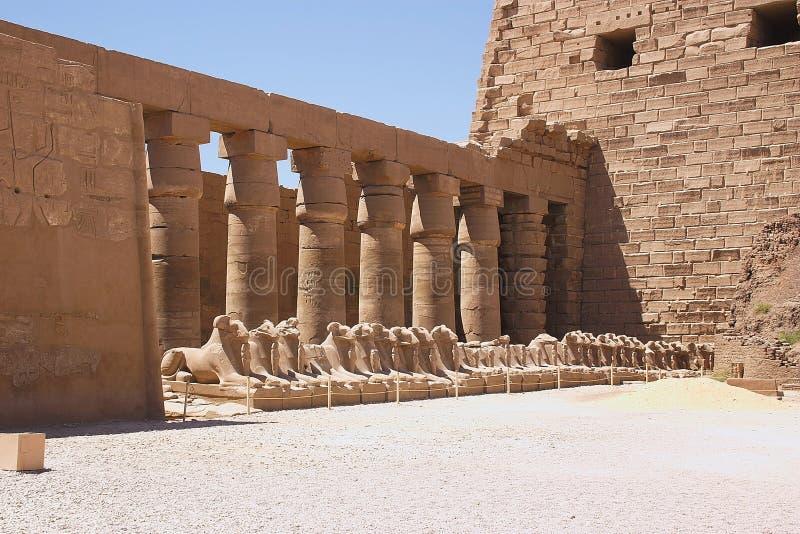 Karnak - Egipto imagem de stock royalty free