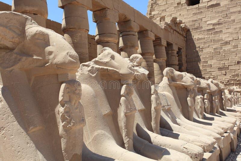 karnakluxor tempel royaltyfri bild