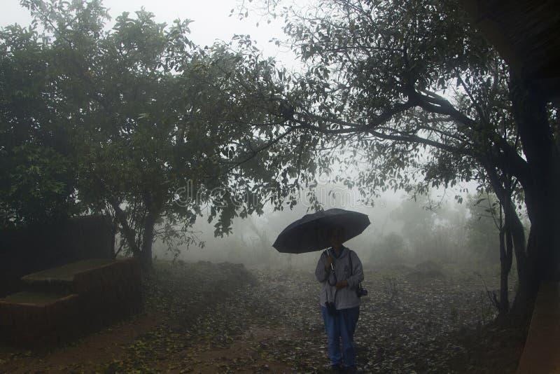 KARNATAKA, la INDIA, junio de 2013, turista con el paraguas dentro del bosque de los ghats de Chorla fotos de archivo