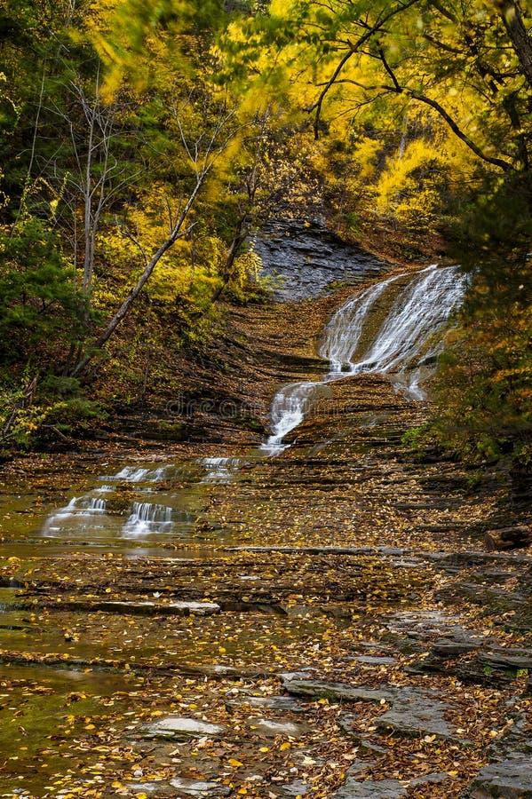 Karnemelkdalingen - Autumn Waterfall - Ithaca, New York royalty-vrije stock foto's