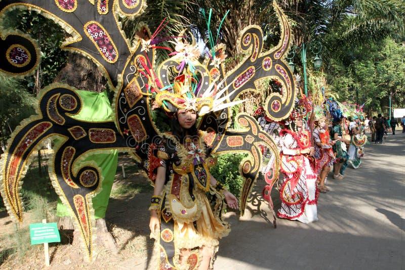 Karnevalkläder royaltyfria bilder