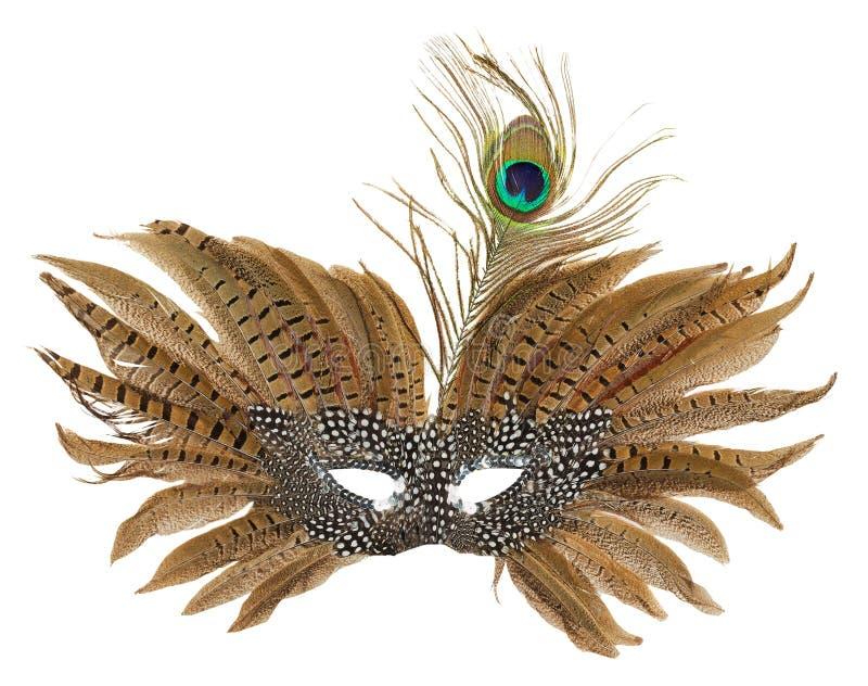 Karnevalsmaske mit den Pfaufedern lokalisiert auf dem weißen backgr lizenzfreie stockfotos