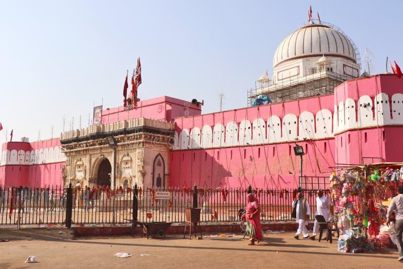 Karni Mata Temple o templo de ratas, Bikaner fotografía de archivo libre de regalías