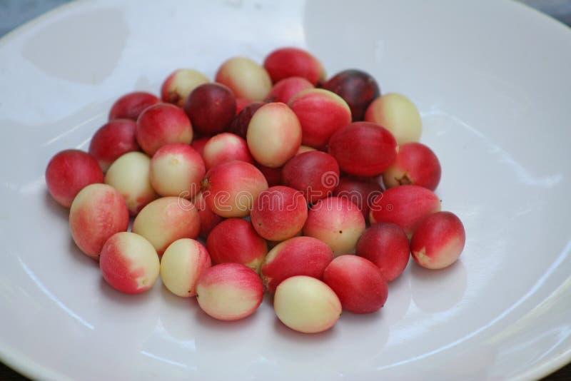 Karonda rouge du plat blanc image stock