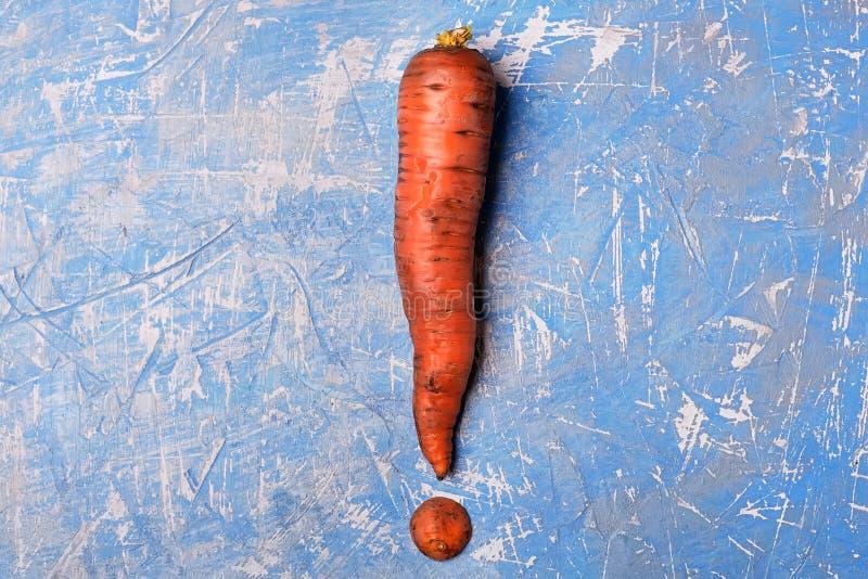 Karotten in Form eines Ausrufezeichens Signal, Vitamine zu essen rohe Nahrungsmittel und Vegetarismus lizenzfreies stockfoto