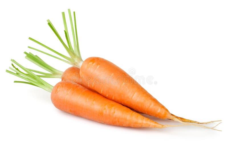 Karottengruppe lizenzfreie stockfotos
