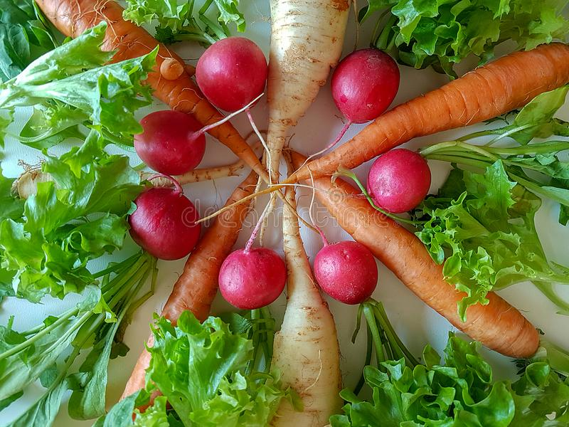 Karottenkohlrabi des frischen Mischgemüses gesunder Nahrungsmittel, stockfoto