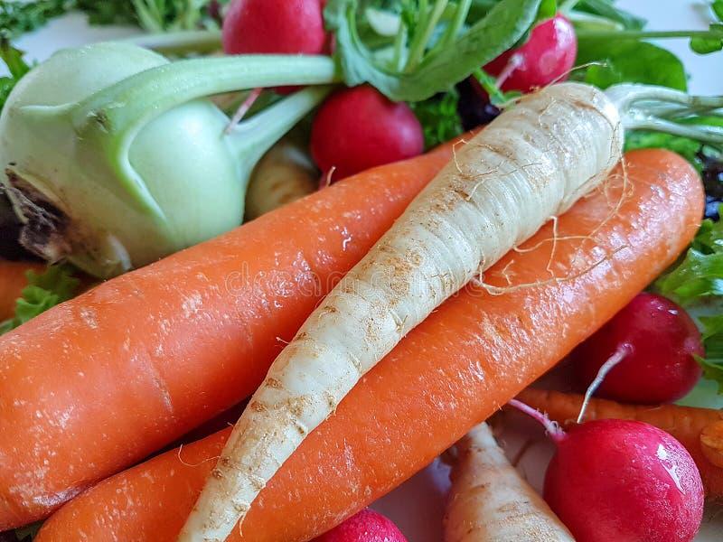 Karottenkohlrabi des frischen Mischgemüses gesunder Nahrungsmittel, lizenzfreies stockfoto