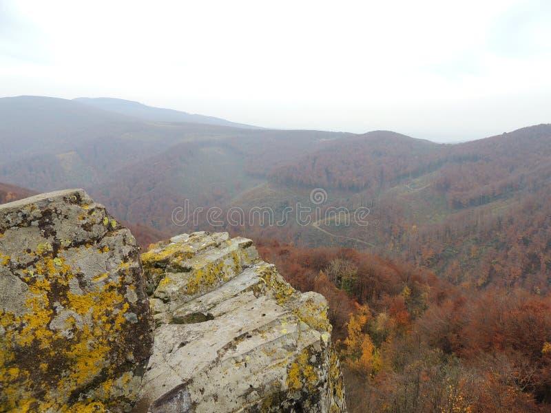 Karpackie góry w jesień kolorach fotografia royalty free