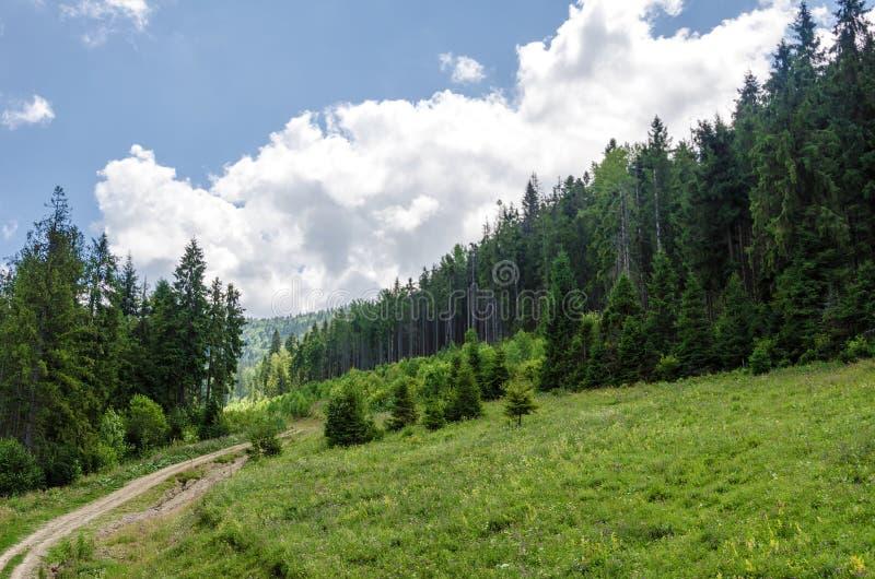 karpaten Ukrainische Berge RAUM FÜR BEDECKUNGSschlagzeile UND TEXT lizenzfreie stockbilder