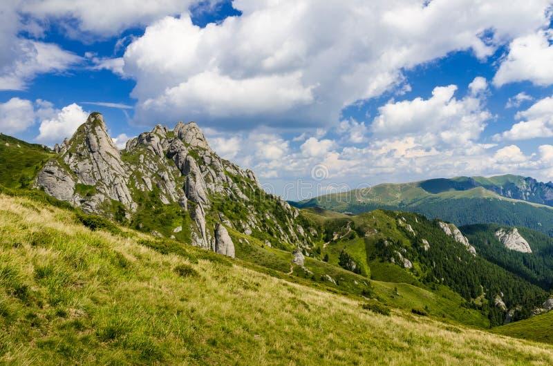 Karpatenberge. Rumänien lizenzfreie stockbilder