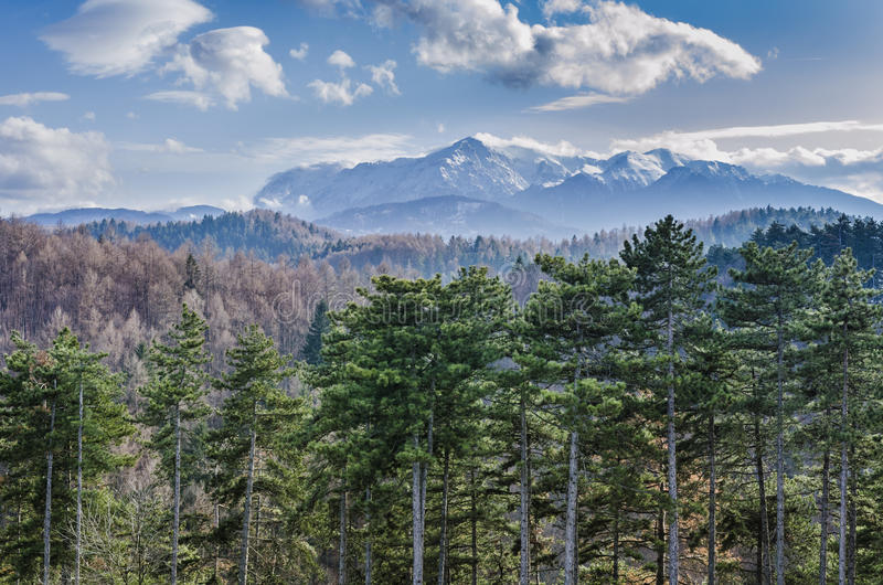Karpatengebirgslandschaft lizenzfreies stockbild