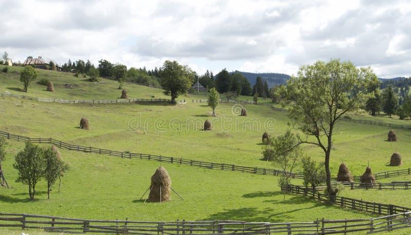 Karpatisch bergenlandschap royalty-vrije stock afbeelding