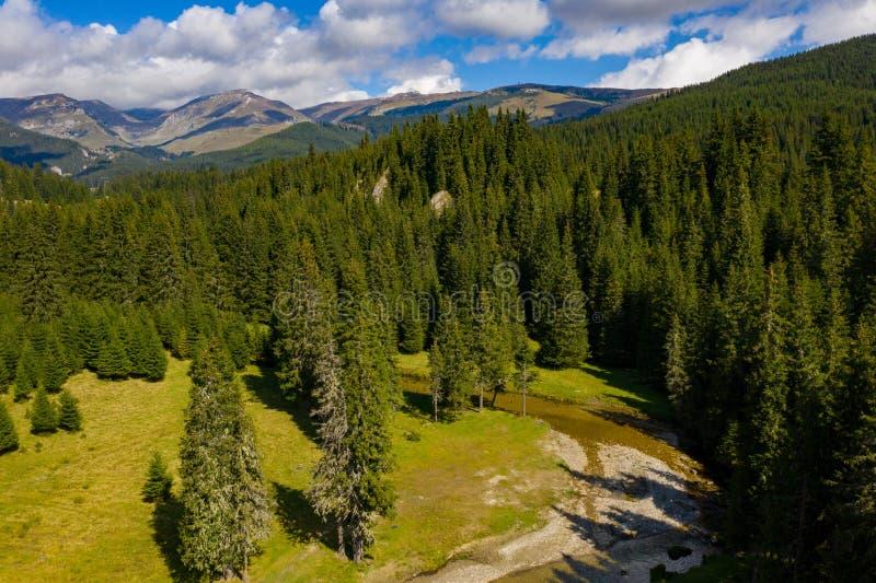 Karpatisch Bergenlandschap op een zonnige dag dichtbij Bolboci L royalty-vrije stock afbeeldingen