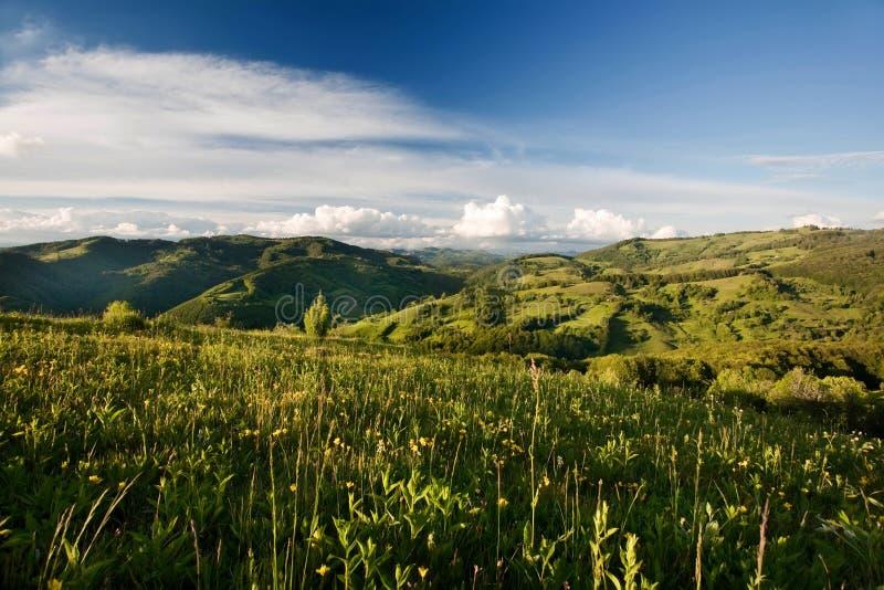 Karpatische berg royalty-vrije stock foto's