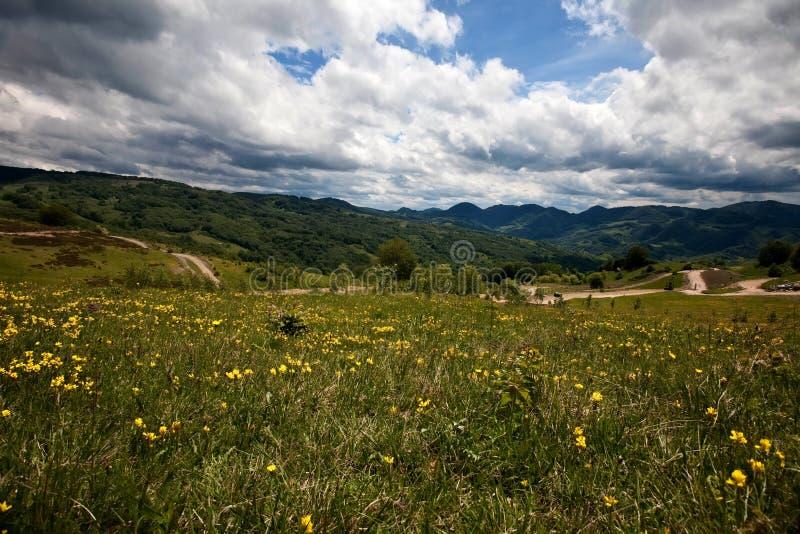 Karpatische berg stock fotografie