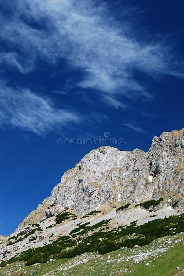 Karpatische Bergen in Roemenië stock foto