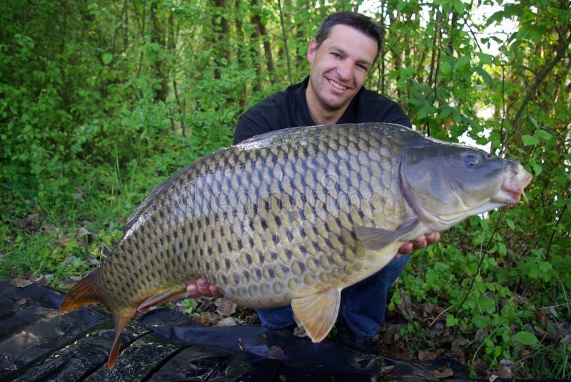 Karper visserij Vangst en versie stock afbeeldingen