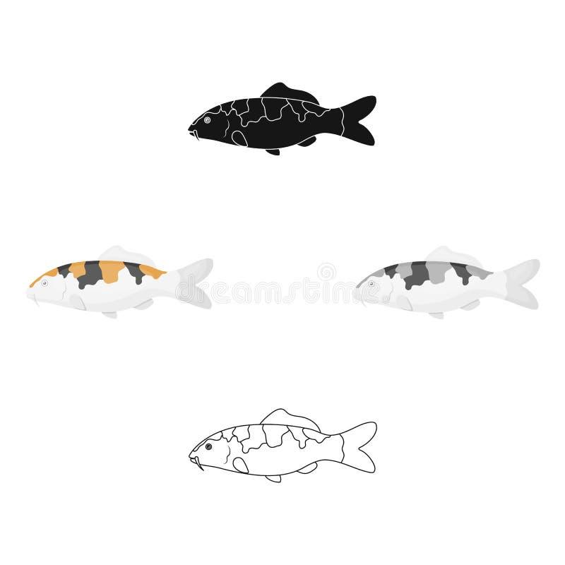 Karpfen-koifisch-Ikonenkarikatur Versengen Sie Aquariumfischikone vom Meer, Ozean Lebenkarikatur stock abbildung