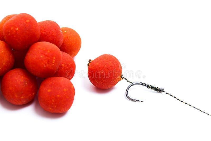 Karpiowy połów Karpiowego haczyka czerwoni boilies odizolowywający na białym tle zdjęcie royalty free