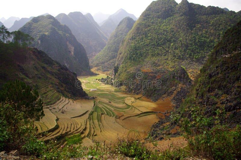 Karst landschap stock foto