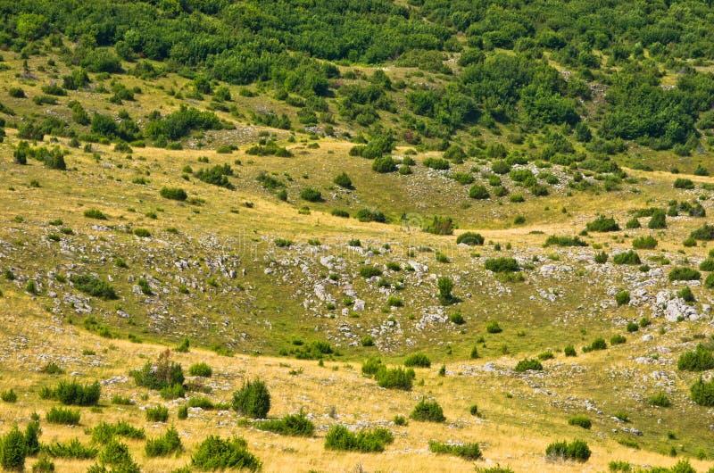 Karstsinkholes, detalj från tjatar på platålandskap arkivfoto