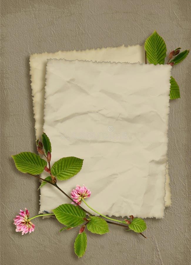 Karta dla wakacje z kwiatami zdjęcia stock
