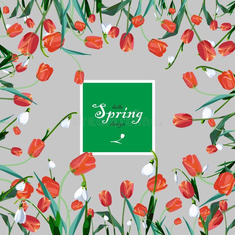 karta kwitnie powitanie wiosna obrazy stock