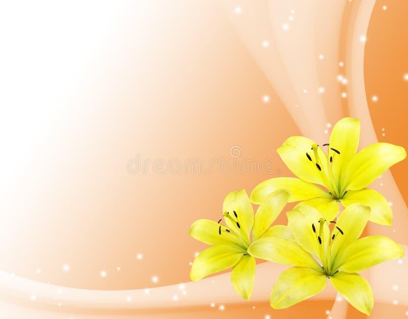 karta kwitnie romantycznego kolor żółty ilustracja wektor