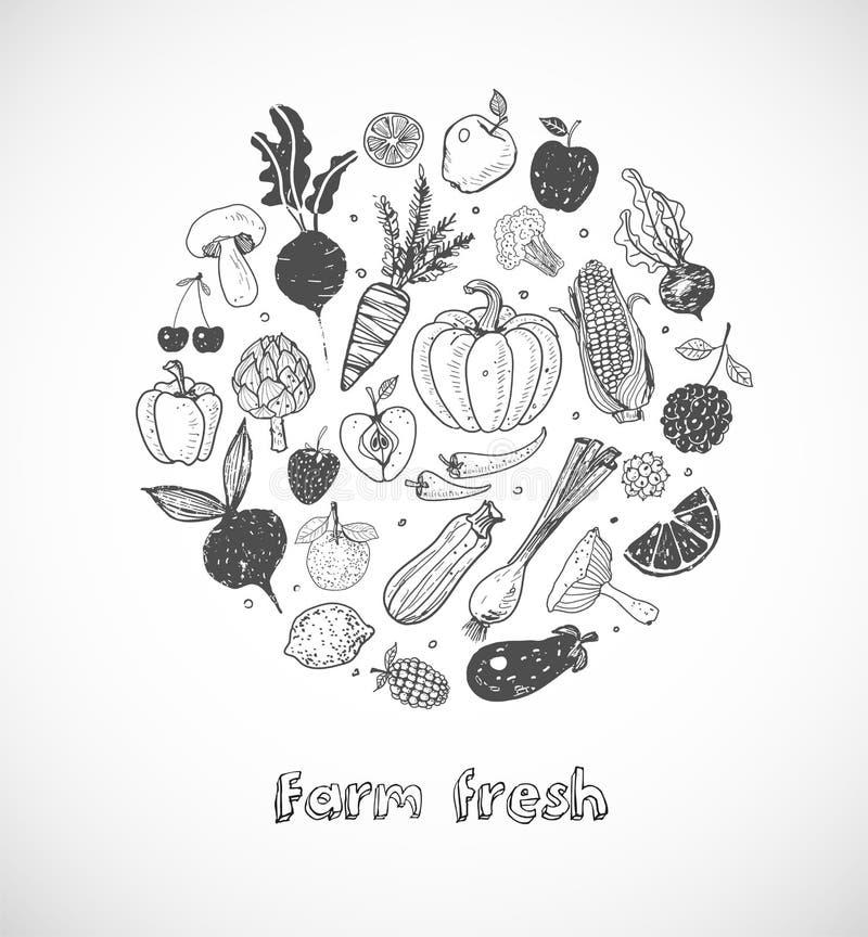 Karta z Doodle owoc i warzywo na białym tle Wektorowa nakreślenie ilustracja zdrowy jedzenie royalty ilustracja