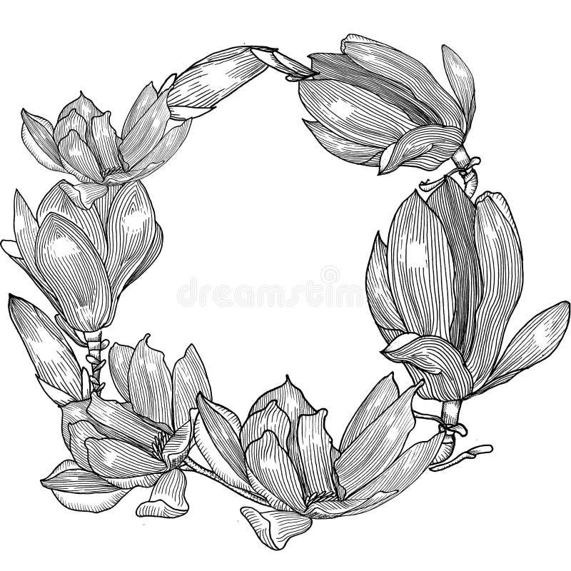 Karta z magnolią ręka patroszona Geaphics royalty ilustracja