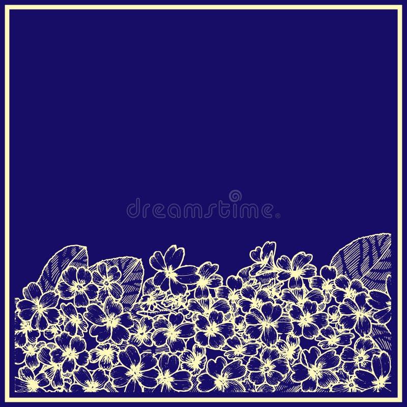 Karta z primula z błękitnym tłem grafit Botaniczny rysunku kwiat royalty ilustracja