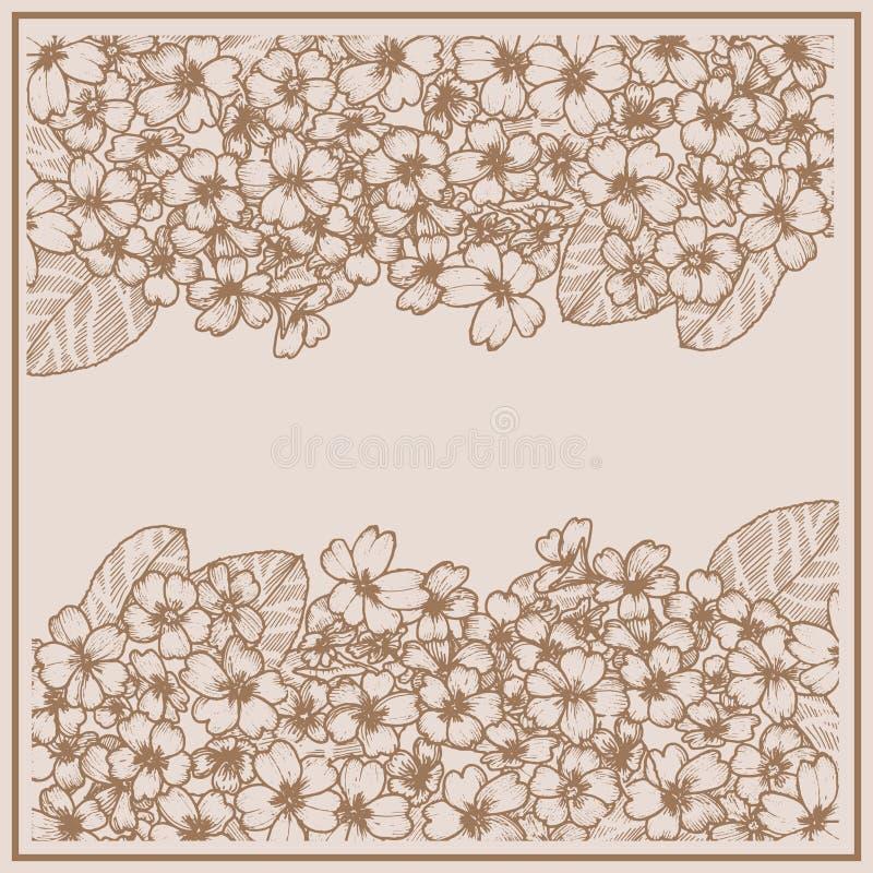 Karta z primula grafit Botaniczny rysunku kwiat ilustracji