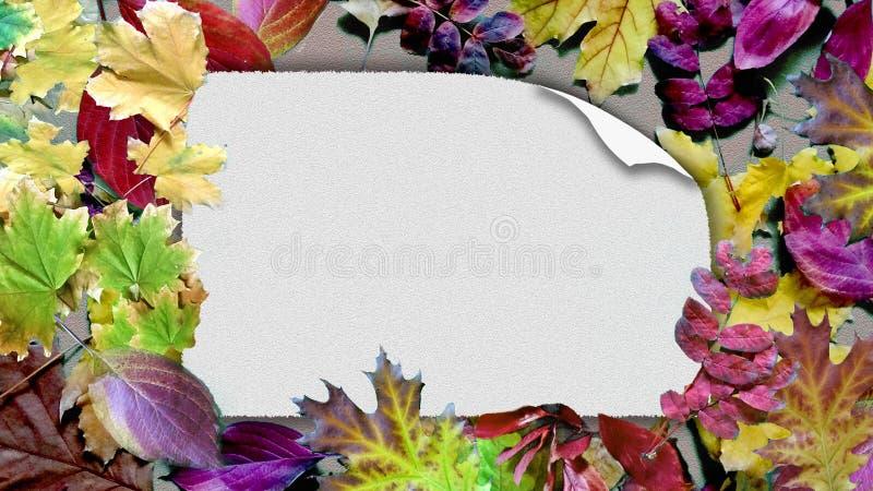 Karte auf Herbstlaubbeschaffenheit lizenzfreies stockfoto