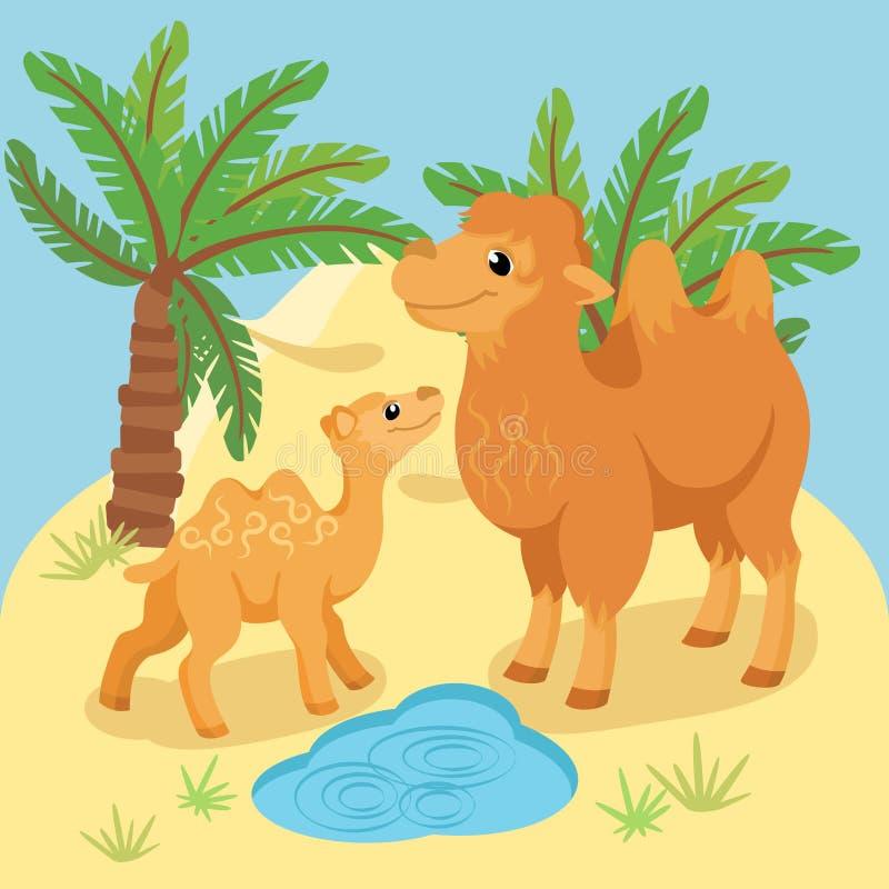 Karte mit erwachsenem und jungem Kamel im natürlichen Hintergrund vektor abbildung