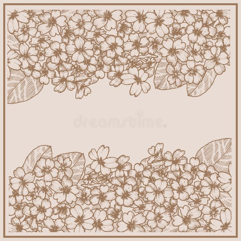 Karte mit Primel graphiken Botanische zeichnende Blume stock abbildung